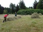 We create the pile of hay and after this we take a way it.